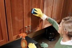 How to Clean Kitchen Cabinets Picture