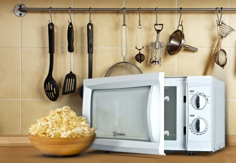 Which Type of Microwave Oven Is Best Suited for Your Needs Picture